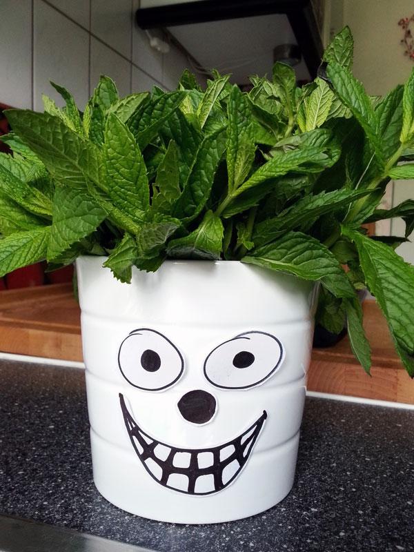 Yes Yes Yo - Mr. Peppermint wünscht euch einen tollen restlichen Samstag :-*
