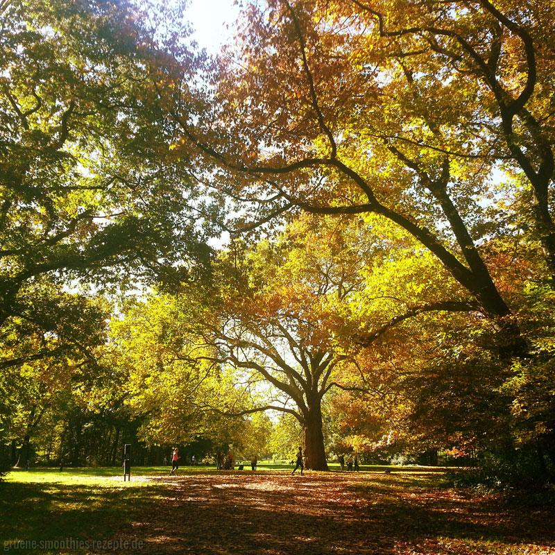 Radtour im Herbst 1