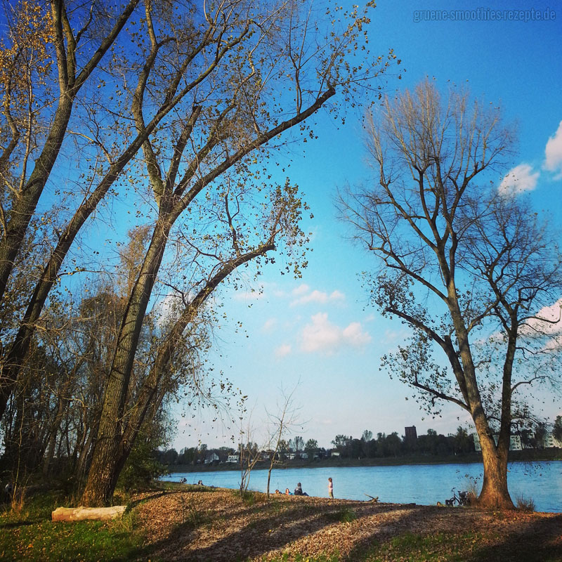 Radtour im Herbst 2