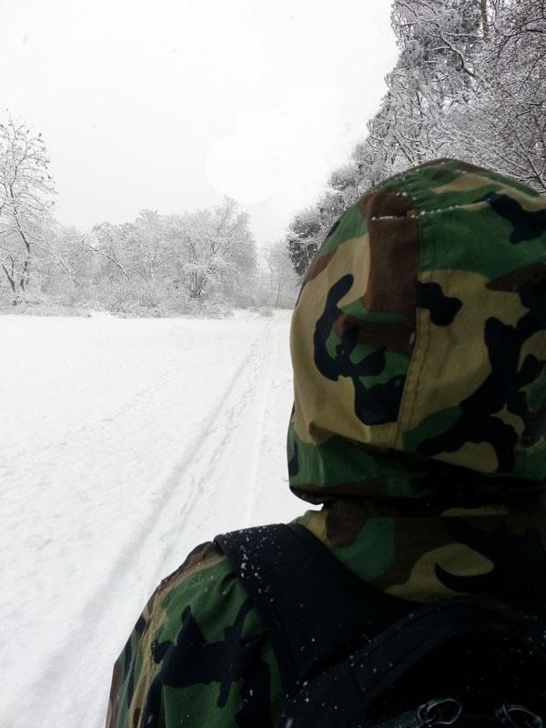 Winterlicher Spaziergang im Schnee