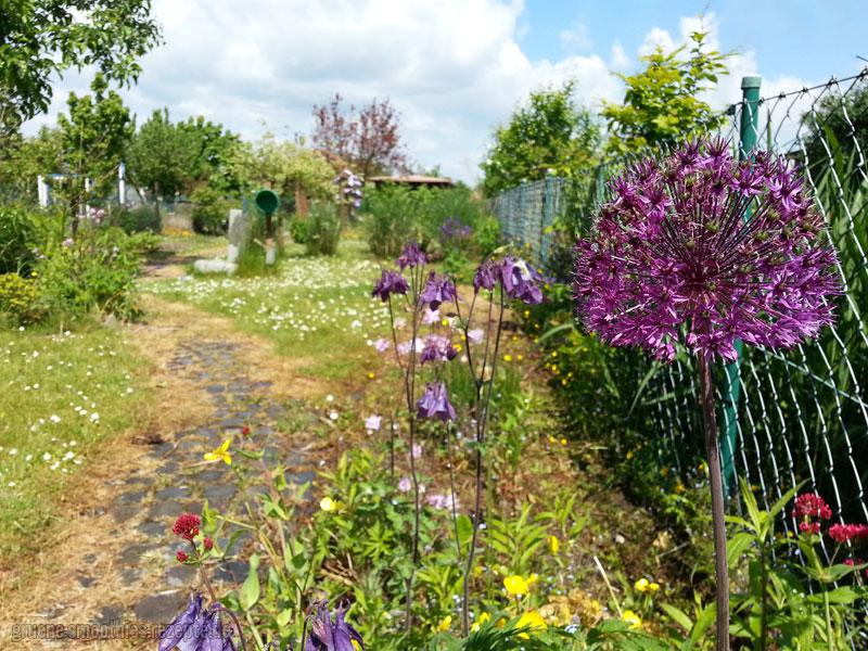 Bei dem schönen Wetter kann man ganz gut im Garten chillen...
